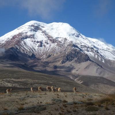 Rondreis Ecuador, 21 dagen