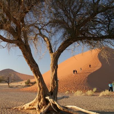 Rondreis Namibië, 22 dagen kampeerreis