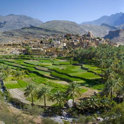Rondreis Oman, 9 dagen