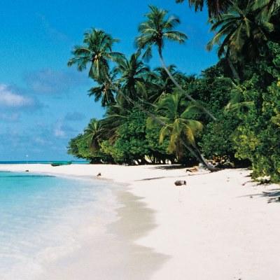 Rondreis Sri Lanka & Malediven, 21 dagen